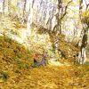 Золотая осень на КМВ (гора Бештау)